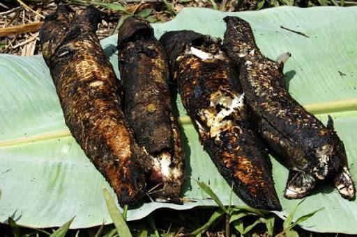 Mùi thơm của cá lóc nướng trui dễ dàng kích thích vị giác bất kỳ ai